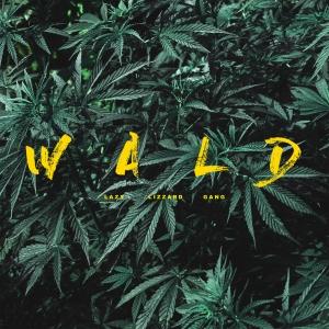 llg_wald mixtape
