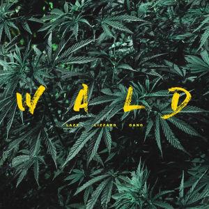 llg_wald